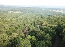 14.75 Acres of Cool Country Breezes!