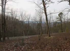 WATCH THE SUNRISE & SUNSET FROM THIS 21+ AC LOT – PRIVATE COMMUNITY