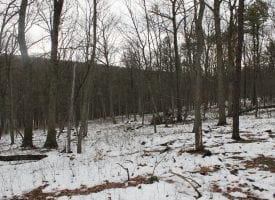 BUILD YOUR MOUNTAINTOP DREAM HOME HERE!
