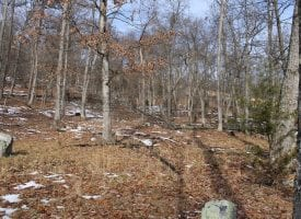 PRIVATE MOUNTAIN COMMUNITY – 20 ACRES – AFFORDABLE & GORGEOUS!