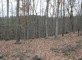 MOUNTAINTOP LOT OFFERS SECLUDED BUILDING SITE ON 20 WOODED ACRES