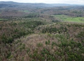 COMPLETELY UNRESTRICTED 177 +/- ACRES