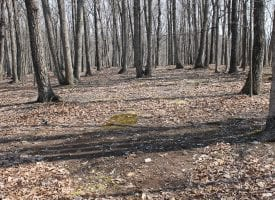 A Real Wild WV Hideout! Hunting Camp & 15 Acres