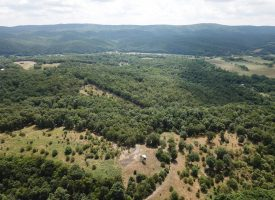Own a picture-perfect 276 acre River Bottom Farm!