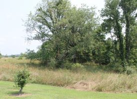 The ideal corner lot for building that new home you have been dreaming about!