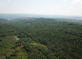 99+ UNRESTRICTED ACRES! GARRETT COUNTY, MD