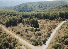 Picture Perfect 20 Acres – Cleared- Wooded-Level